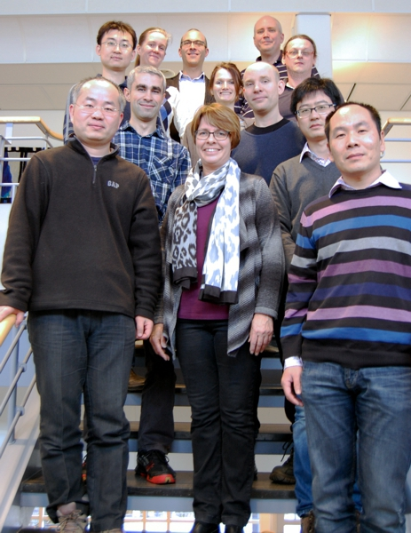 Division of Surface Physics and Chemistry at IFM LiU