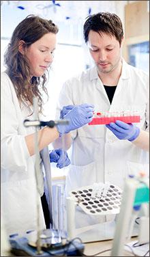 Forskare i labb. Foto David Einar